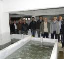 Karakaya Baraj Gölü'ne 2 milyon 680 bin balık yavrusu bırakıldı